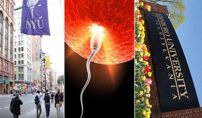 এডিনবরা ও নিউ ইয়র্ক বিশ্ববিদ্যালয়ের উদ্যোগে কৃত্রিম মানব ডিম্বাণু