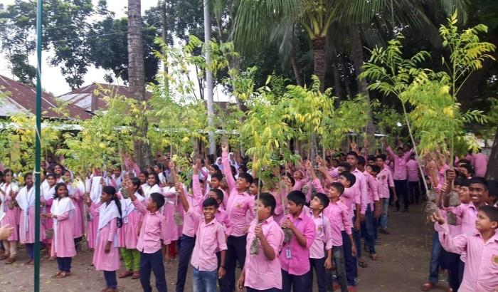 টিফিনের টাকায় বড়াইগ্রামের শিক্ষার্থীদের ২৫ হাজার গাছ রোপণ
